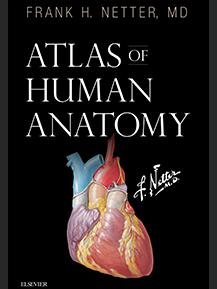 Netter's Atlas of Human Anatomy