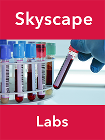 Skyscape Labs
